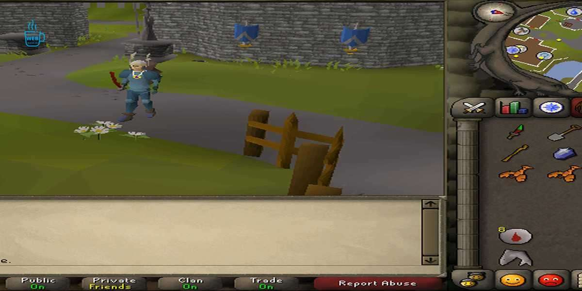 Tutorial Island was nothing you had ever seen before